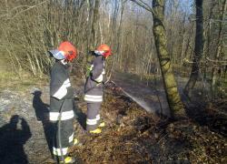 Pożar trawy i ściółki w Lisewie