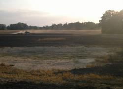 Pożar zboża w miejscowości Kurowo