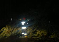 Powalone drzewo na trasie Opalino - Rybno