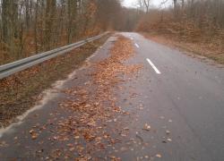 Zaspy z liści i gałęzi na trasie Czymanowo – Gniewino