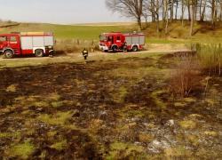 Pożar suchej trawy w Perlinie