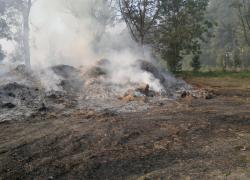 Pożary stert słomy w Lisewie - 11.09.2016