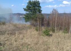 Pożar suchej trawy w Czymanowie
