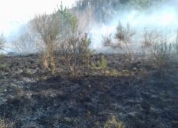 Pożar suchej trawy w Czymanowie - 15.04.2018