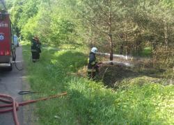 Pożar poszycia leśnego przy drodze Opalino-Rybno