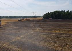 Pożar zboża w okolicy miejscowości Chynowie - 29.07.2019