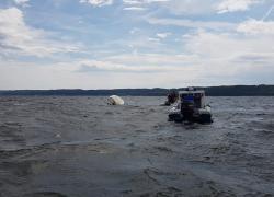 Przewrócona żaglówka na jeziorze Żarnowieckim
