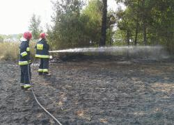 Pożar ścierniska w Gniewinie - 15.08.2019