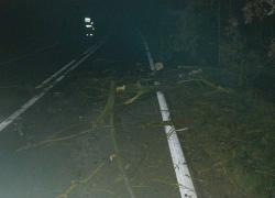 Gałęzie zalegające na jezdni w Nadolu