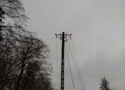 Powalone drzewo w Toliszczku - 31.01.2020